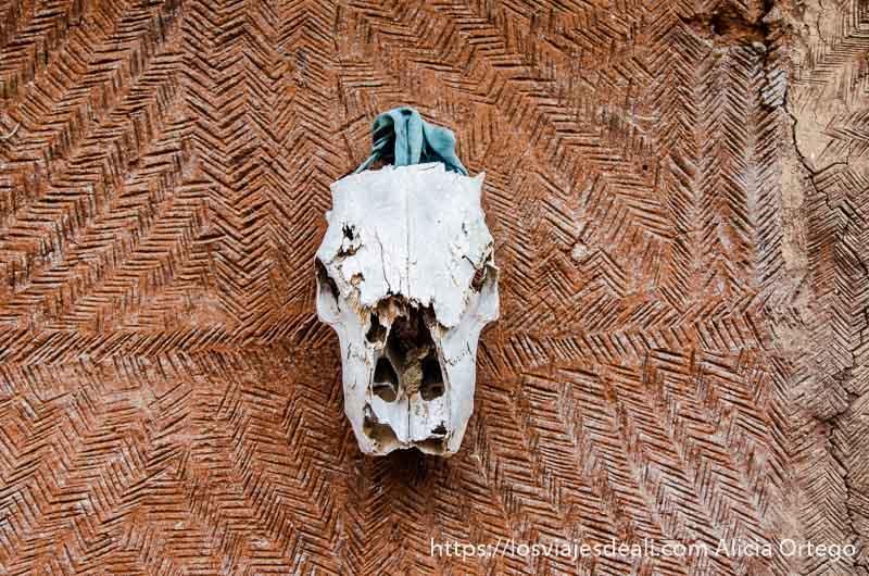 calavera e animal colgada en un muro exterior de una casa somba tribus de benin