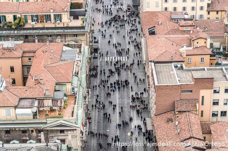 vistas desde el aire de bolonia con calle llena de gente y tejados rojos en callejar por bolonia