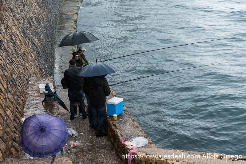 pescadores en la corniche protegiéndose de la lluvia con paraguas