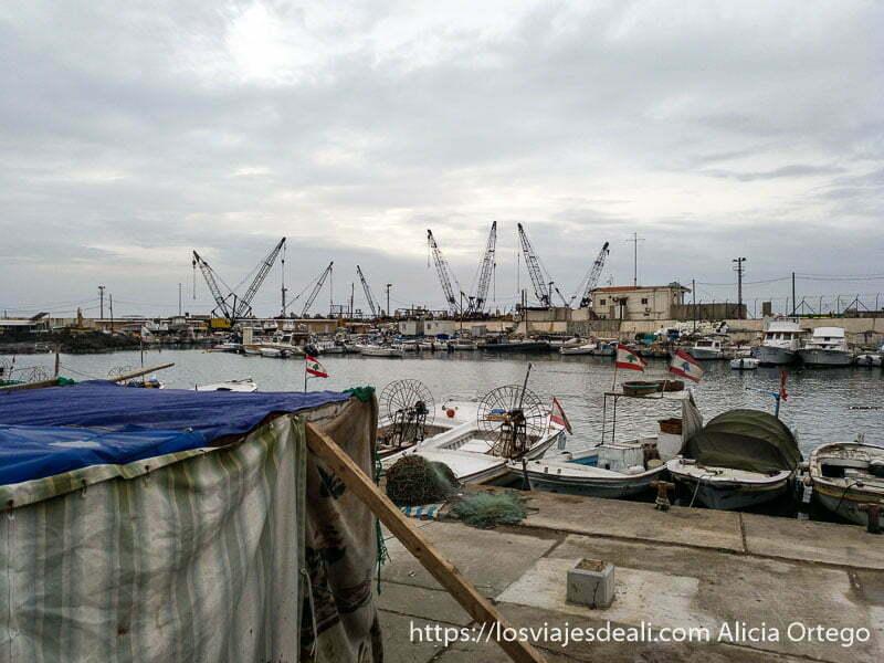 puerto pesquero de sidón con pequeñas barcas amarradas en un día nublado