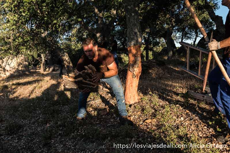 hombre recogiendo trozos de corcho junto a un árbol en la escapada a cáceres