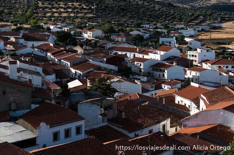 casas blancas con tejados rojos de valencia de alcántara vistos desde arriba