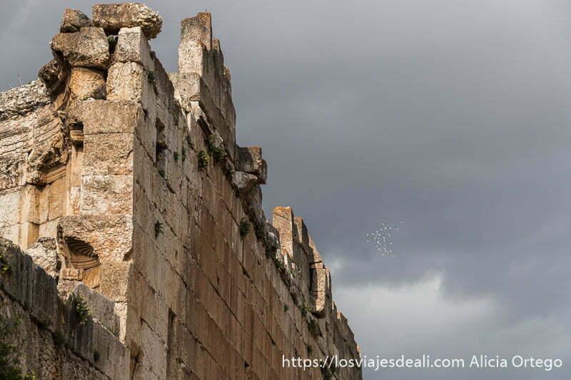 muros de baalbek con nubes de tormenta gris y una bandada de pájaros blancos