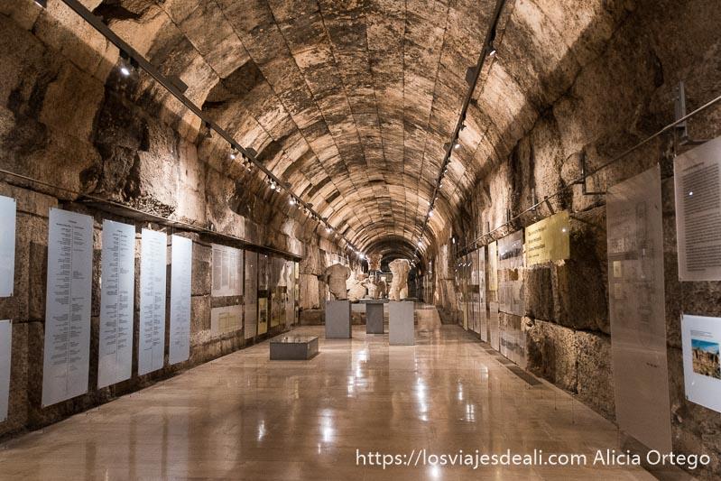 pasillo central del museo de baalbek con estatuas y paneles explicativos