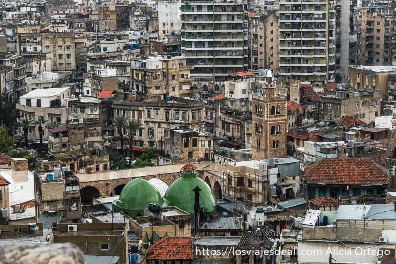 vista de los tejados de la ciudad antigua de trípoli con una mezquita y dos cúpulas verdes