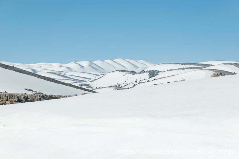 campos nevados impolutos y cielo azul en las montañas de líbano