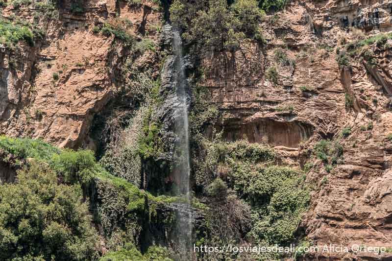 cascada cayendo en pared calcárea llena de grutas y vegetación en las montañas de líbano