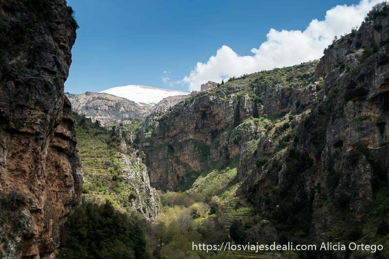valle profundo con monte líbano nevado arriba y nubes blancas a la derecha viajar a líbano