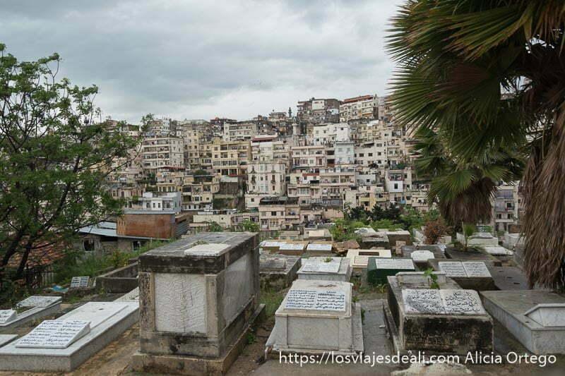 cementerio con tumbas y lápidas escritas en árabe y ciudad de trípoli al fondo