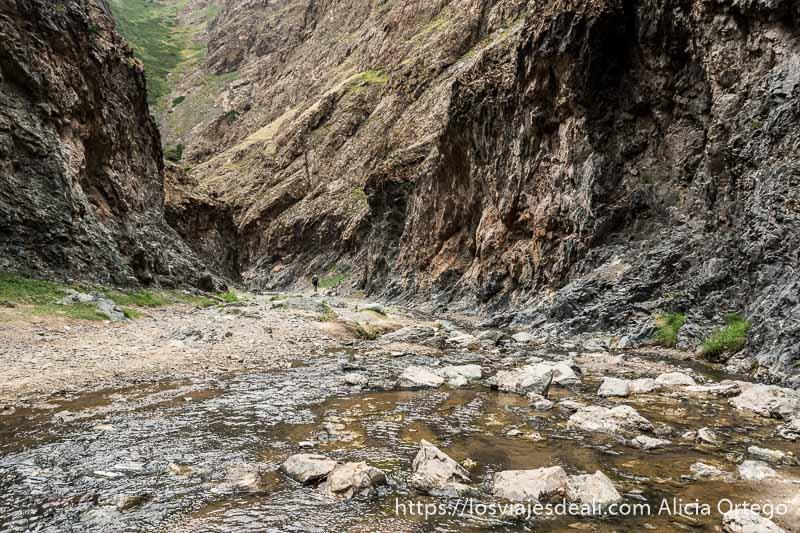 cañón de paredes de roca juntas y el río en el centro en el desierto del gobi