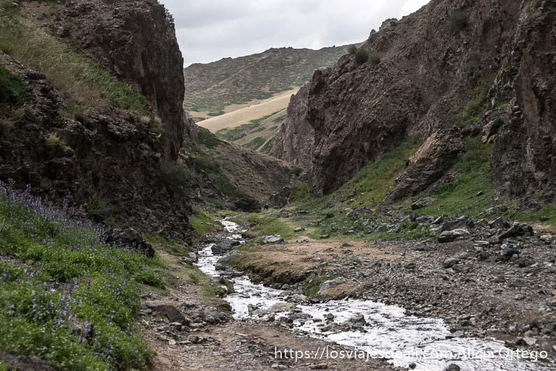 final del cañón de yol am con más espacio entre rocas, hierba y flores, en el desierto del gobi