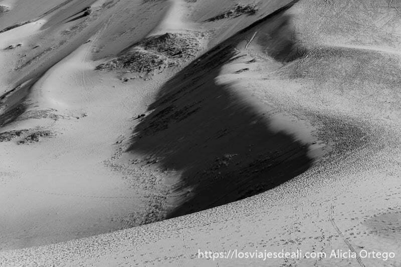 dunas del desierto del gobi llenas de huellas viajar a mongolia