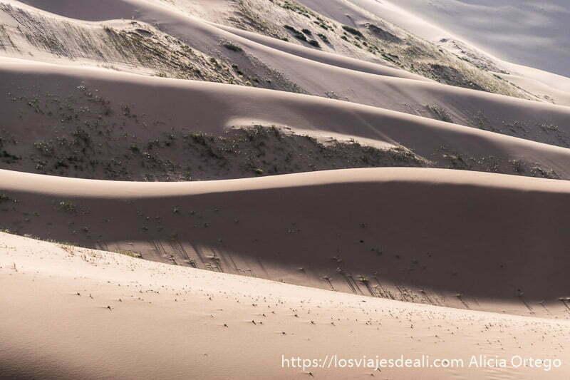 ondulaciones en las dunas del desierto del gobi
