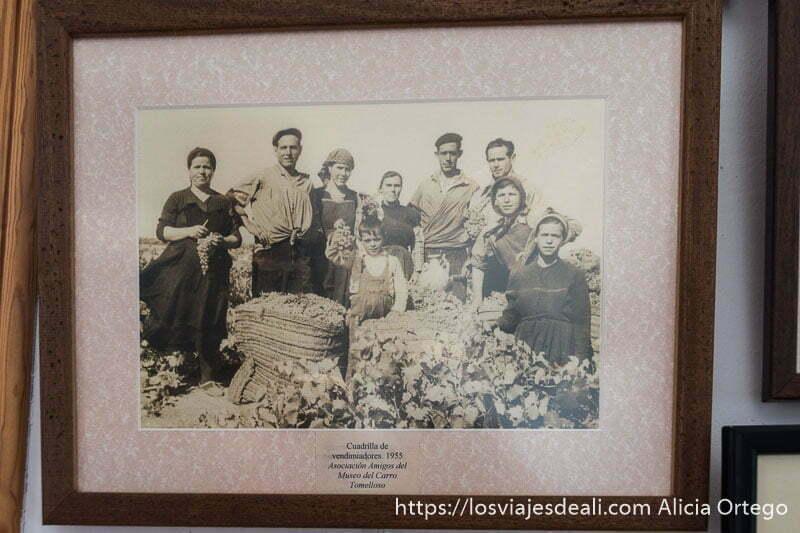 fotografía antigua de cuadrilla de vendimiadores de 1955 donde se ve a 4 mujeres 3 hombres y dos niños uno de ellos sosteniendo un racimo de uvas