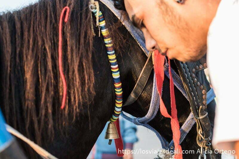 cabeza de caballo con collar de cuentas de colores y campanita de metal