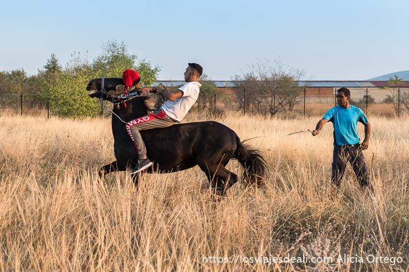 dos hombres domando a un caballo en un campo uno de ellos montado sin silla y el caballo alzando la cabeza gitanos de bulgaria