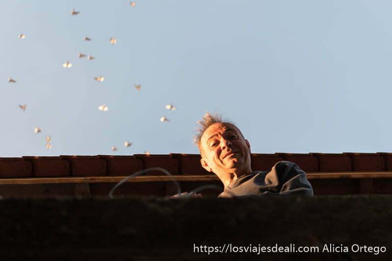 kim asomado al balcón con grupo de palomas volando que parecen salir de su cabeza