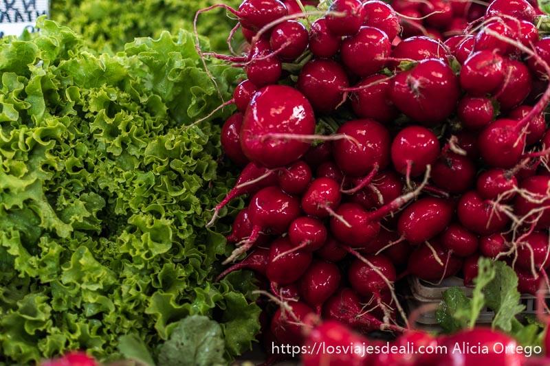 rabanitos rojos y lechuga verde de cerca, ocupando la mitad de la foto cada uno, en el mercado de sliven