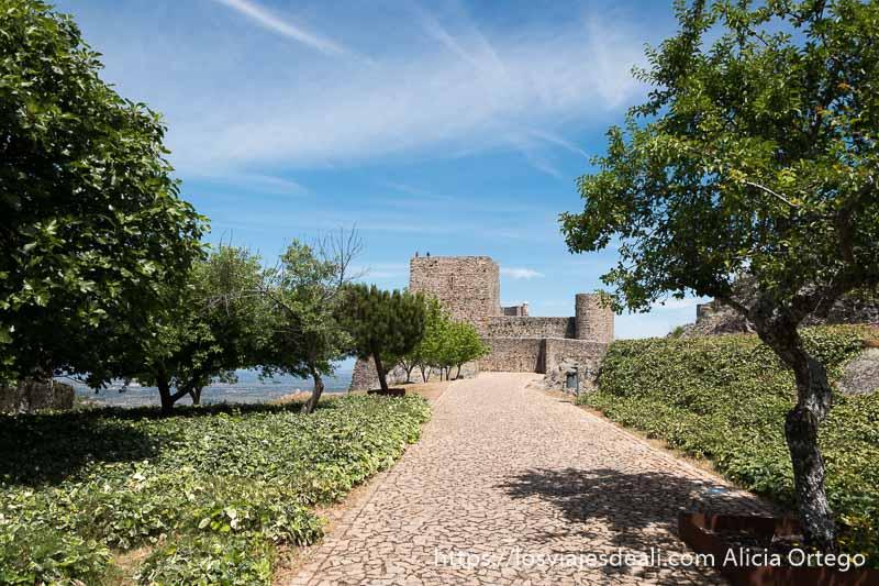 patio de armas del castillo de marvao con murallas y torre del homenaje al fondo y fila de árboles con vegetación cuidada