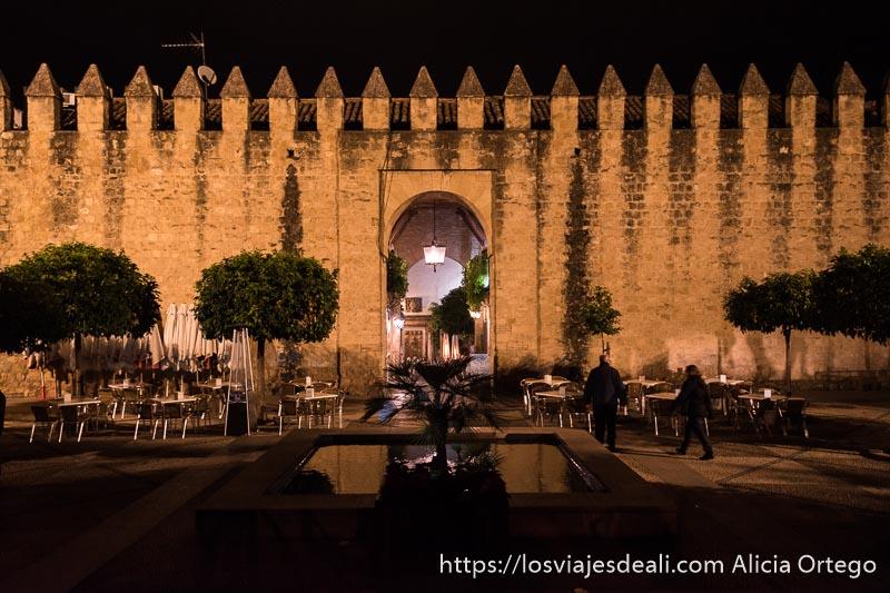 muralla de córdoba iluminada por la noche con naranjos delante y una fuente en el centro visitar córdoba
