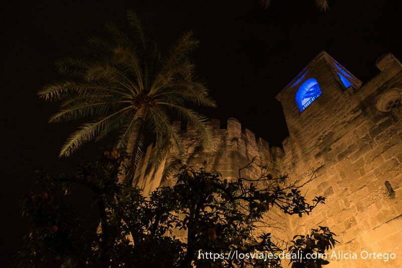 torre del alcázar vista desde abajo y palmera datilera al lado visitar córdoba