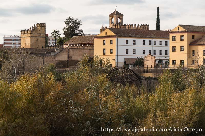árboles, antigua noria árabe y murallas y torre del alcázar al fondo en el en el centro histórico de córdoba