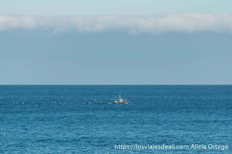 barco pesquero pequeño en medio del mar rodeado de gaviotas blancas que le siguen