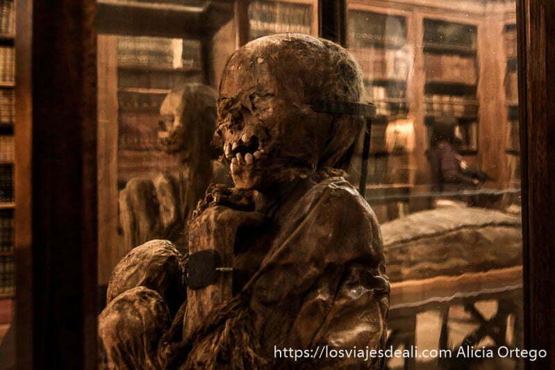 momias de yungai en vitrinas en el centro de lisboa