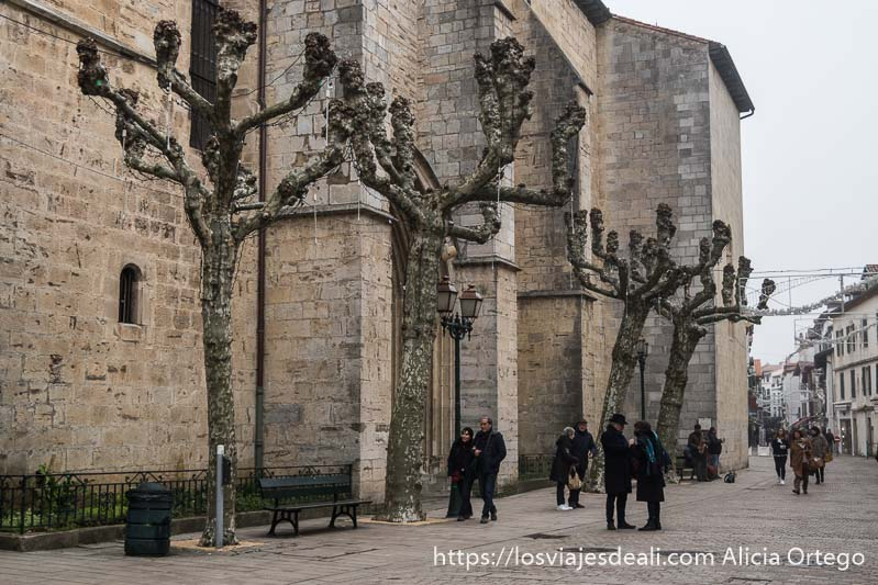 muros de la iglesia de san juan de luz con árboles desnudos por ser invierno