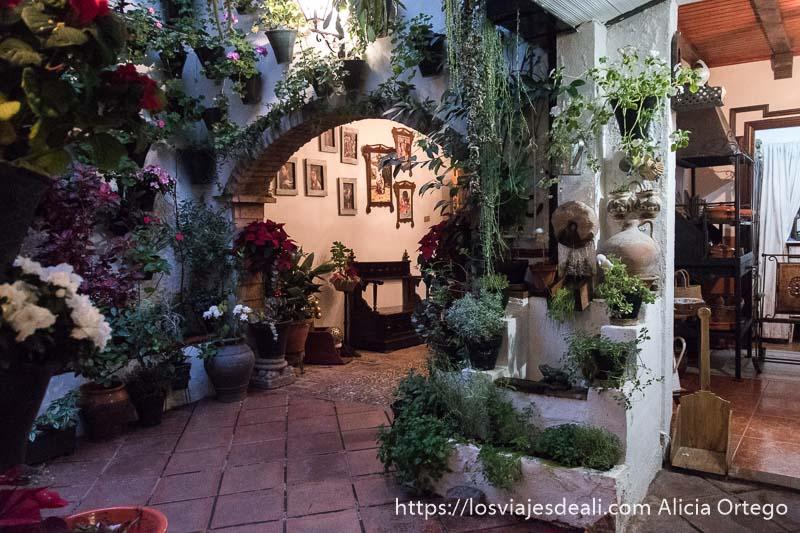 patio con arco que da paso al zaguán con cuadros en la pared y muchas macetas con plantas aromáticas y flores
